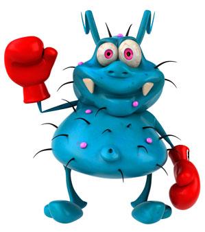 Bug Vertex Academy