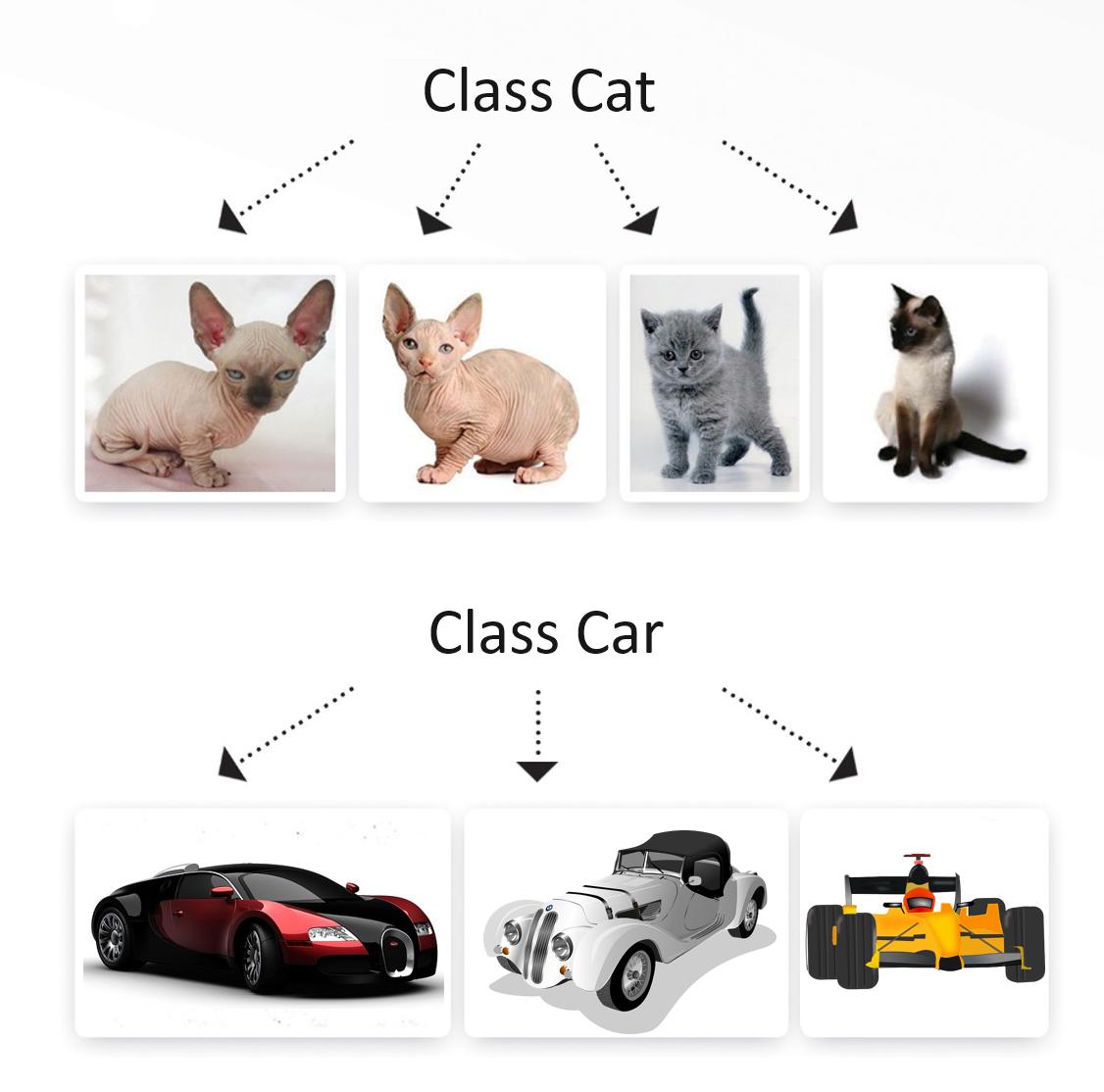 Classes_vertex-academy