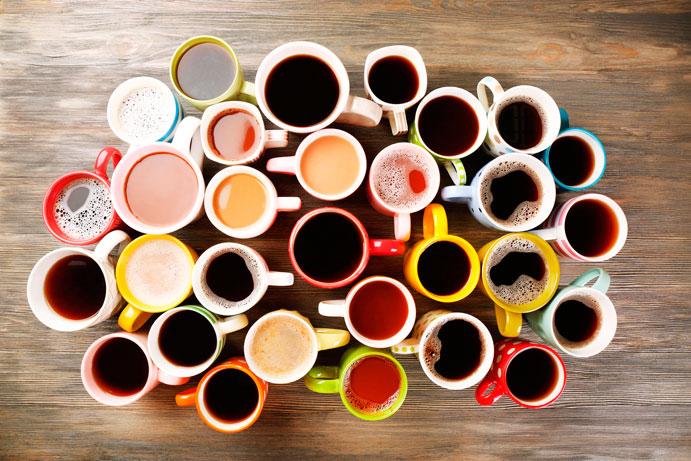 Cups-Vertex-Academy